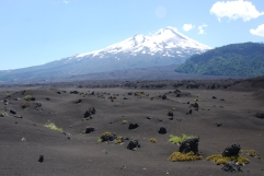 Volcan Lliama's lava field.