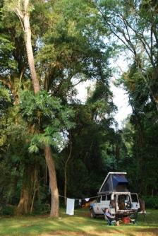 Beautiful campsite in the Atlantic Rainforest