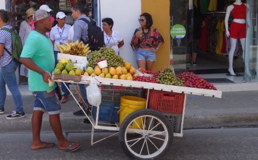 Amazing fruit everywhere.
